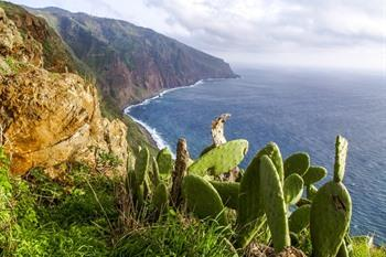 Madeira, Ponta do Pargo