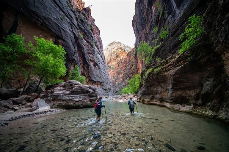 Wandelen in Zion National Park