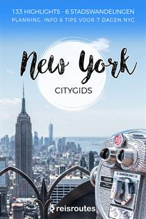 Reisgids New York gratis downloaden PDF [ebook]