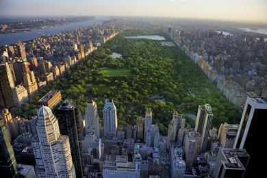 Wandeling Central Park, Times Square en Broadway - New York